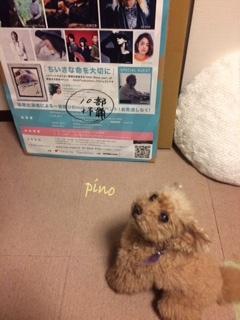 pinoとポスター.JPG
